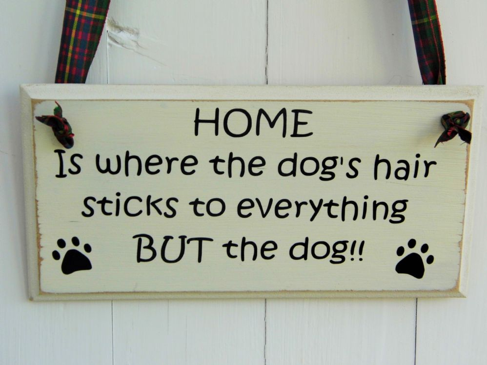 Wall Plaques Pleasing Funny Wall Plaque  Home Design Decoration
